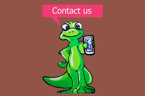 Ghekko - contact us